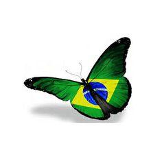 ... brazil butterfly flag ✔BWC