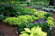More Shade Garden Tips | Shade Garden Plans | Smart Design Tips And Ideas For A Shaded Garden