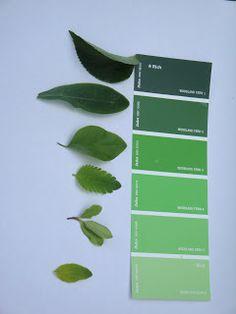 green leaf game