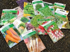 Poate aveti in curte un loc pentru o gradina de legume. Dar, aici, soarele nu bate decat o scurta perioada de timp de-a lungul zilei. Ce de de facut? Carrots, Vegetables, Plant, Carrot, Vegetable Recipes, Veggies