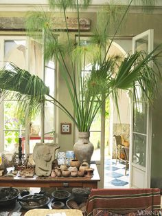 """""""Palm fronds and papyri in a Moroccan vase accent a trove of objets""""— from Umberto Pasti's exotic garden."""