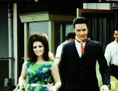 Elvis and Priscilla Presley in Hawaii, May, Elvis Presley Priscilla, Elvis Presley Photos, Lisa Marie Presley, Rare Pictures, Rare Photos, Freddy Rodriguez, Elvis Quotes, Robert Sean Leonard, Elevator Music