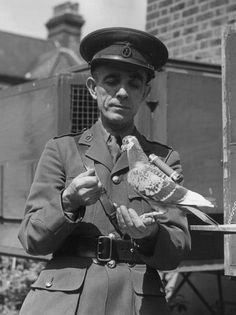 Winkie Winkie was a pigeon who won the Dickin Medal in 1943 for assisting in the rescue of an aircrew forced to ditch in North Sea during the Second World War.