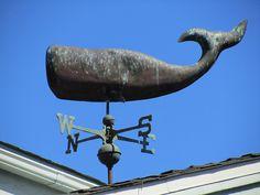 Whale Weather Vane, La Jolla | Flickr - Photo Sharing!