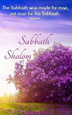 Sabbath Shalom!