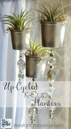 These little planters are a great way to reuse k-cups and brighten your house with some green!