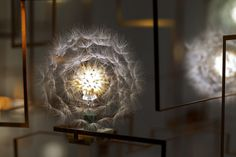 Dandelion LED Chandelier by Studio Drift — THE OPSIS