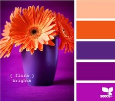 1000 images about color orange purple on pinterest - Purple and red go together ...