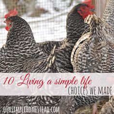 Living a Simple Life #lifestylechoices #choosetomove #sustainableliving #simplelife