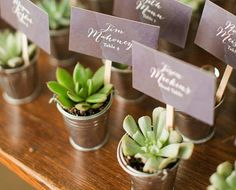 Mini Metal Pails Set of 10 Great for Mini Succulent Favors Country Wedding Favors, Rustic Country Wedding Decorations, Wedding Aisle Decorations, Beach Wedding Favors, Wedding Favors Cheap, Wedding Gifts, Rustic Weddings, Country Weddings, Fall Wedding