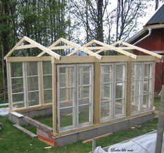 Har nesten et helt år nå prøvd å få tak i gamle 2 eller 4-rams eller 6-rams vinduer. Bildet er lånt fra Har nemlig så skrekkelig lyst å bygge meg et drivhus av gamle vinduer. Men ikke sånne kjipe … #greenhouses