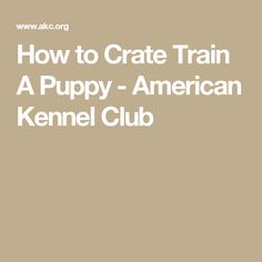 How to Crate Train A Puppy - American Kennel Club