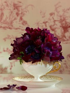 Purple Anemone in Teacup