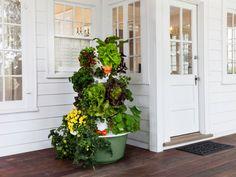 10 Vertical Gardening Ideas:    http://www.hgtvgardens.com/garden-types/10-space-saving-vertical-gardens?s=1soc=pinterest