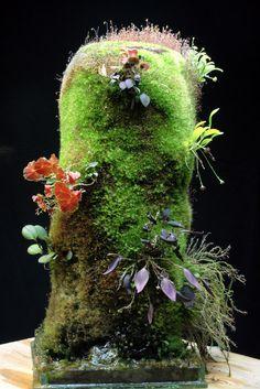 orchids terrarium - Buscar con Google