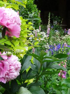 Castle Combe, England garden