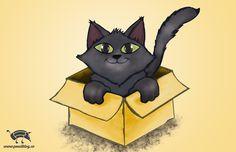 Cat In Box by jmsf-co