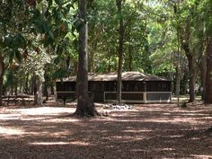 Assembly Shelter at Savage Island Campground at Fort McAllister State Historic Park