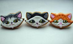Cutesy kitties :)