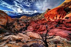 Red Rock Canyon, Las Vegas. I've been to Las Vegas a hundred times and never had seen this place until a brief visit this year. Must explore it more soon.