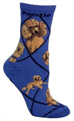 Apricot Poodle Animal Socks On Blue 9-11 Wheel House Designs http://www.amazon.com/dp/B00BW6MP7W/ref=cm_sw_r_pi_dp_CYcNtb0TVMXBKH17