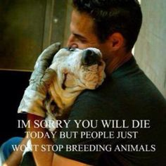 Stop breeding animals! Spay and neuter your pet!
