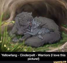 Image result for warrior cats cinderpelt