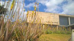 Museu de Arte - Belo Horizonte MG. #Oscar