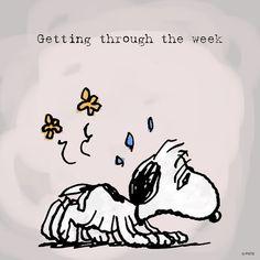 Getting through the week. April 2016