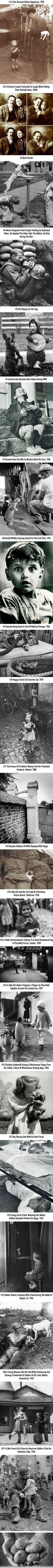 21 Of The Most Heartwarming Historic Photos Ever - Sugar Sweet - History Facts Faith In Humanity Restored, History Facts, Strange History, History Memes, Funny History, History Photos, Art History, Historical Photos, Belle Photo