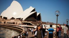 Australia's ranking plummets in expat survey of the best countries to live and work in Visa Canada, The Sydney Morning Herald, Cool Countries, Australia, Good Things, Country, Live, Building, February 3