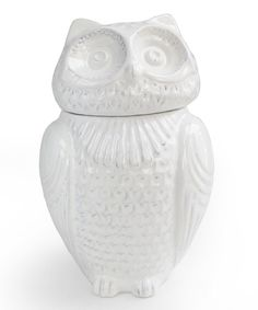 Look at this Large White Owl Jar on #zulily today!