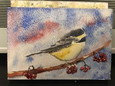 This cute little chickadee is looking for some shelter on his cold December day