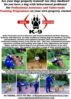 Dog Training by Professionals