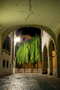 Treviso, Italy by Carlo Maglitto on Flickr