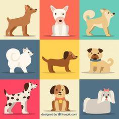 Colección de lindas razas de perros