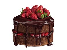 32 new Ideas for cupcakes chocolate frosting decoration Chocolate Strawberry Cake, Strawberry Cakes, Chocolate Cake, Chocolate Frosting, Cake Drawing, Food Drawing, Brush Drawing, Drawing Poses, Dessert Illustration