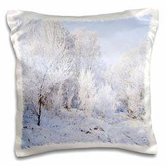 Yves Creations Winter Scenery - Snowy Trees - 16x16 inch ... https://www.amazon.com/dp/B016CK1KLY/ref=cm_sw_r_pi_dp_x3aAxbYJ55NPS