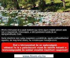 Ne dobd el ahol éppen elfogy a csomagolt vized, vagy inkább meg se vedd, akkor el sem tudod dobni. Ennyire egyszerű, inkább tisztítsd meg a csapvized W25 víztisztítóval és vidd magaddal BPA mentes vizes kulacsban, környezettudatos egészséges megoldás!  #víztisztító #környezetszennyezés #vizes_kulacs #w25_víztisztító #csapvíztisztítás #víztisztítás Periodic Table, Periodic Table Chart, Periotic Table
