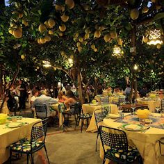 Is this out of a fairy tale? Almost - it's Ristorante de Paolino, Capri, Italy - known for its lemons,this converted lemon grove is where you can dine under a pergola of lemon trees