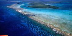 Belize - largest barrier reef in Western Hemisphere - fantastic snorkeling in waters with 100 to 200 foot visibility.