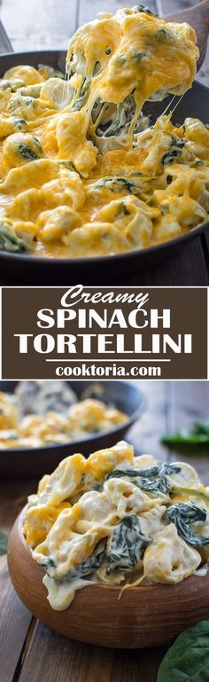 This 5-ingredient Creamy Spinach Tortellini makes a quick and tasty dinner that all the family will love! ❤️ COOKTORIA.COM #Italian #spinach #cheese #tortellini
