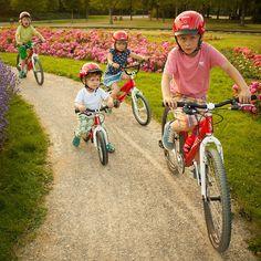 Best Kids Bike, Kids Around The World, Cargo Bike, Bike Ideas, Bmx, Mountain Biking, Pretty Girls, Bicycle, Photoshoot