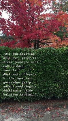 Mutluluk Sözleri One day, someone enters your life. Stop thinking about people who made you unhappy in the past, ignoring all the people in the world . Love Quotes, Inspirational Quotes, Romantic Photography, Meaningful Words, Eminem, Beautiful Words, Cool Words, Quotations, Literature