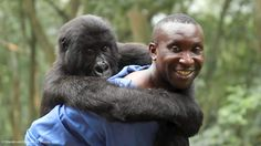 Virunga | Documentary
