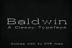 Baldwin is classic slab serif font that is perfect for use in any design project. Comes in Regular, Italics, Bold,. Slab Serif Fonts, Bold Italic, Beautiful Fonts, Premium Fonts, All Fonts, Lightroom Presets, Handwriting, Design Projects, Script