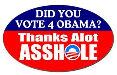 Did You Vote for Obama?