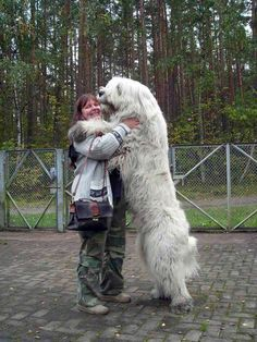 Now that's a BIG doggie hug from a Russian Sheep Dog