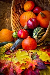 autumn concept with seasonal fruits and vegetables/organic food background; autumn harvest with farmers vegetable fruits on dark wooden background/thanksgiving day concept Bountiful Harvest, Fall Harvest, Bowl Image, Fruits And Veggies, Vegetables, 300 Piece Puzzles, Harvest Basket, Fall Fruits, Autumn Scenes