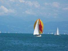 Sailing Boats, Sport, Water